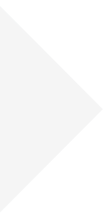 expert_white_tringle